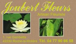 Mep joubert fleurs